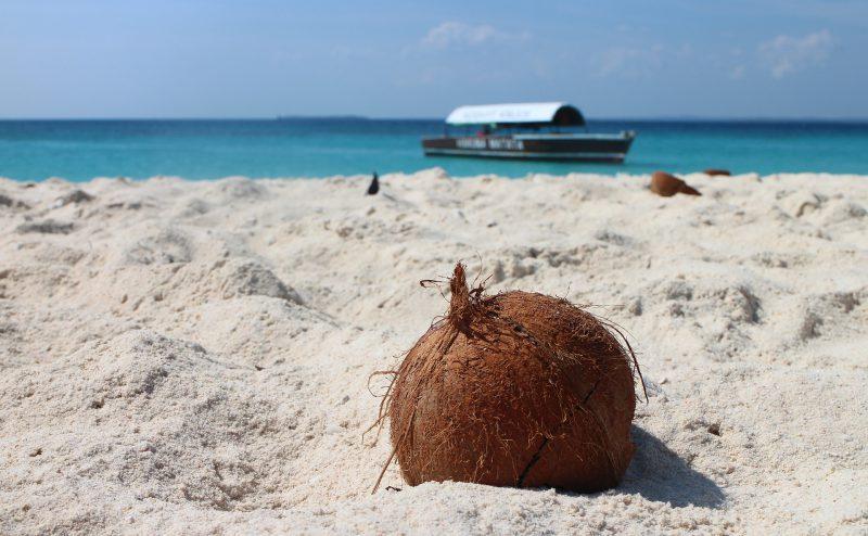 Przygoda na Zanzibarze